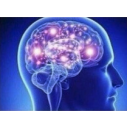 expanding_brain_2 emoji