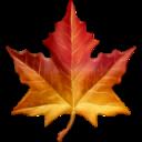 maple-leaf emoji