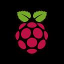 raspberry-pi-logo emoji