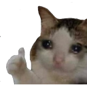 sad-cat-thumbs-up emoji