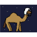 spacecamel
